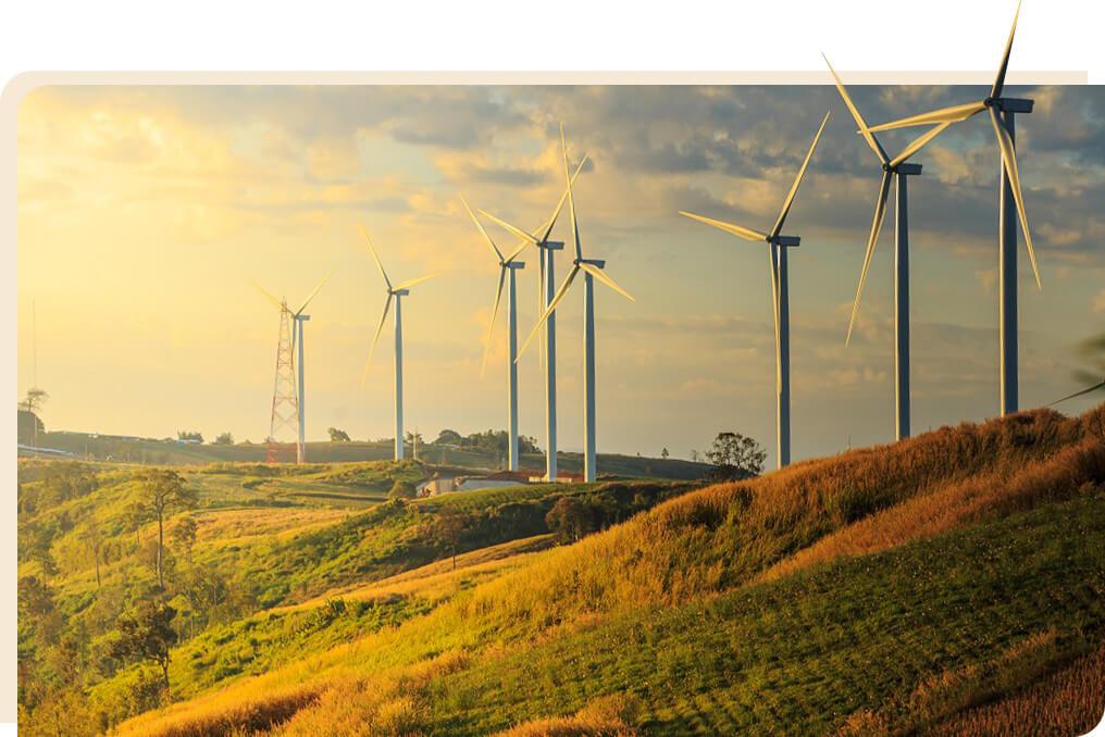 bình thuận đẩy mạnh đón dòng vốn đầu tư Bình Thuận đẩy mạnh đón dòng vốn đầu tư img4