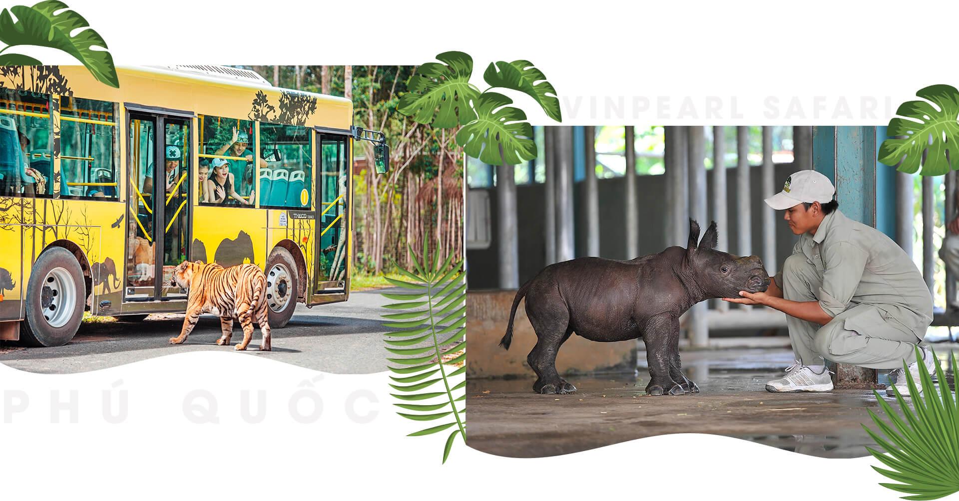 những trải nghiệm chỉ có ở hội an, nha trang, phú quốc - pics6 - Những trải nghiệm chỉ có ở Hội An, Nha Trang, Phú Quốc